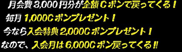 t_004-min.png
