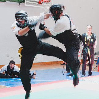 Kick/Punch/Throw/Quick Submit Fighting