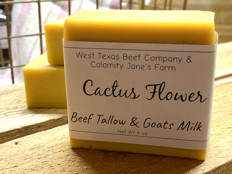 Beef Tallow and skincare