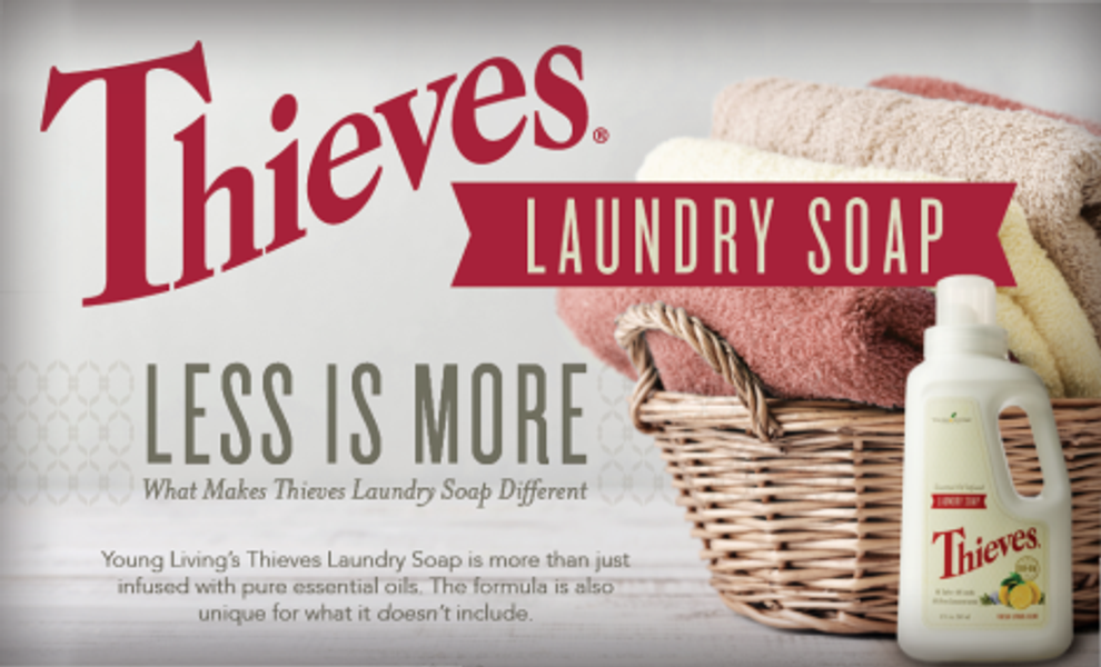 Article-Headers_Thieves-Laundry-Soap