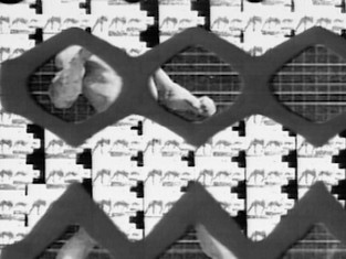 Dissecting Muybridge Part II: Structures, 2014