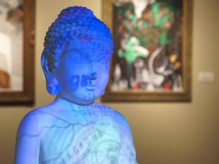 Projecting Buddha, 2013–2017