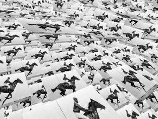 Dissecting Muybridge Part III: Limits of Chronophotography, 2014