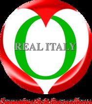 Consorzio Stabile Real Italy Scarl