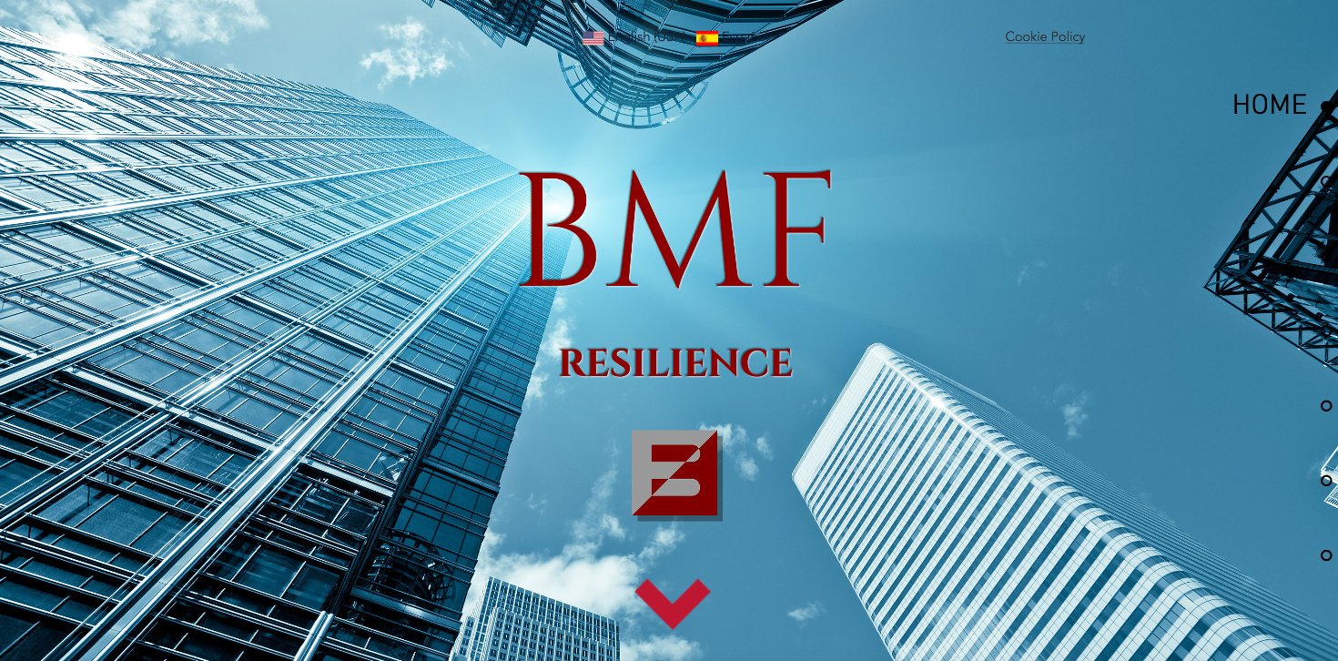 BMF Resilience