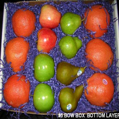 Fruit Box #6