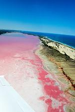 Pink Lake-5170.jpg