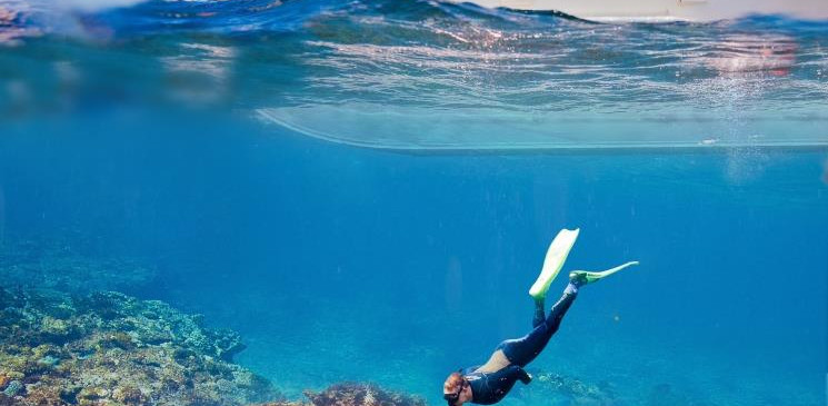 Abrolhos Islands Snorkeling