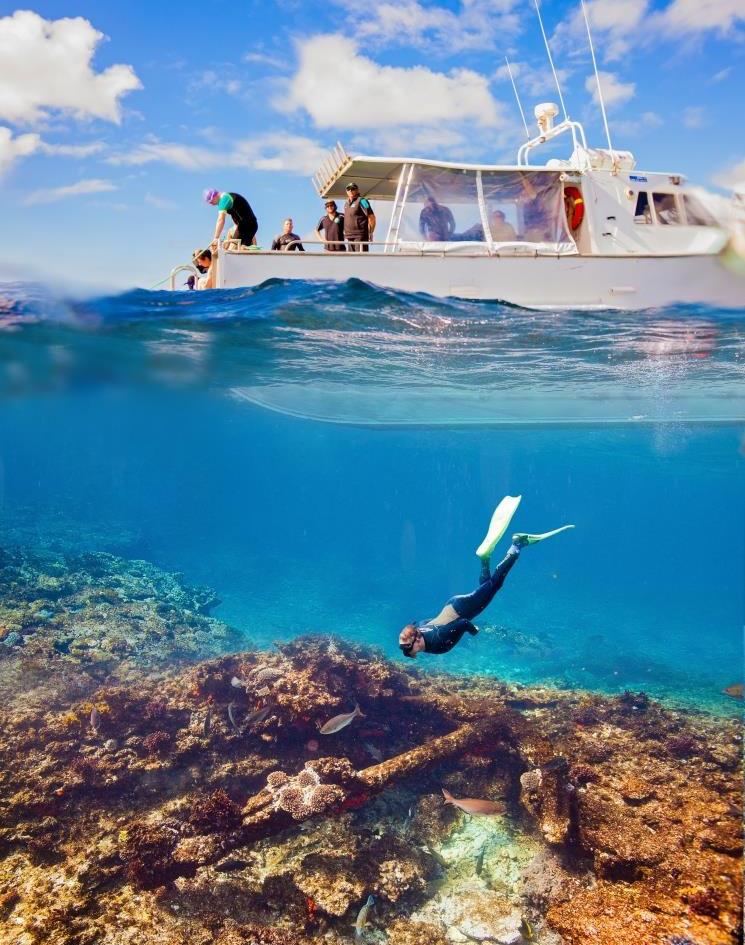 Abrolhos Islands Snorkeling