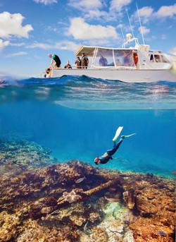 Abrolhos Islands (7)