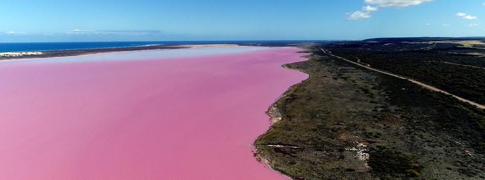 The Pink Lake - Hutt Lagoon (2).jpg