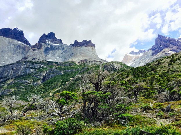 Patagonia 2.JPG