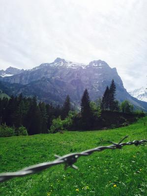 Switzerland (8).JPEG