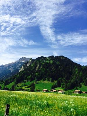 Switzerland (6).JPEG