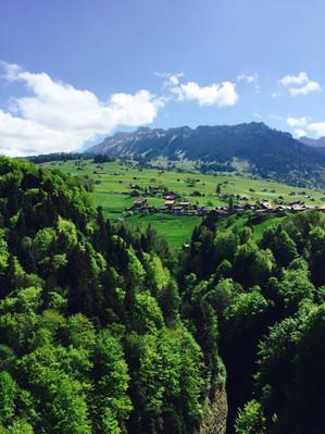 Switzerland (5).JPEG