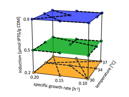 Intensified DoE and hybrid modeling accelerate upstream process characterization