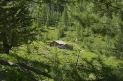 Bergli Hütte