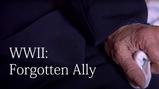 WWII: Forgotten Ally