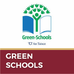 Button-Green Schools.png