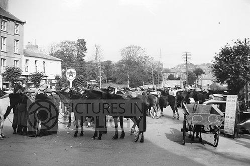Fermoy Horse Fair Cork 1954 Ref R54-4412