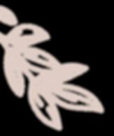 leaf2-03.png