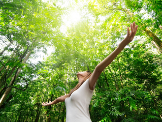 Psicologia Positiva: Três Passos para a Felicidade