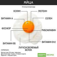 marysrecipesapp_71040466_471343120147518