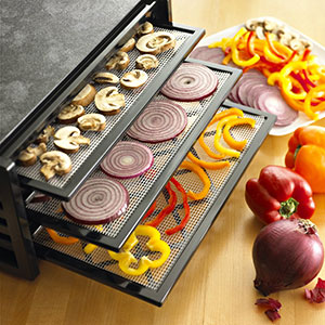 7.-Excalibur-5-tray-with-timer-icon-picture