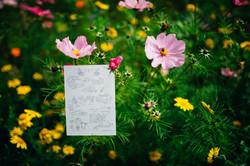 bespoke hand drawn invitation