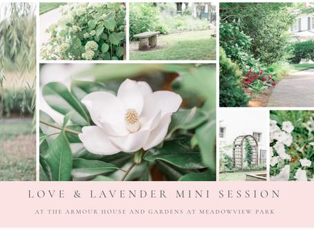 Mommy & Me Mini Session 2020 | Love & Lavender | Sarah Duke Photography