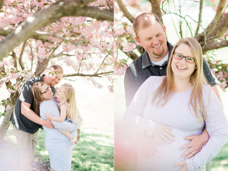 The Armour House & Gardens at Meadowview Park | Adams Family Maternity | Sarah Duke Photography