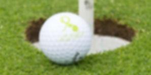 Millenium_Golf_Home.jpg