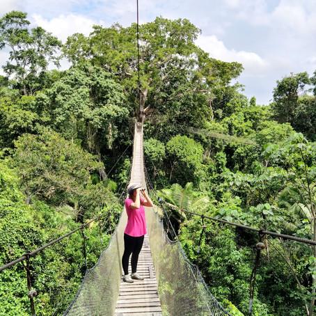 4 nap az Amazonas esőerdőben