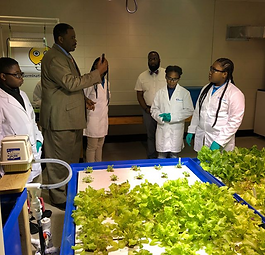 We Prouce Grads Brookstown Middle Istrouma High Aquaponics