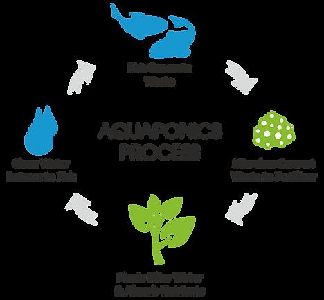 We Prouce Grads Brookstown Middle Istrouma High Aquaponics