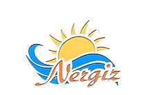 nergiz logo-1.png