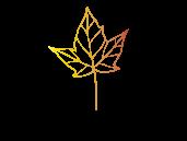 logotipo-hoja-seca.png