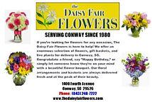 Daisy fair.jpg
