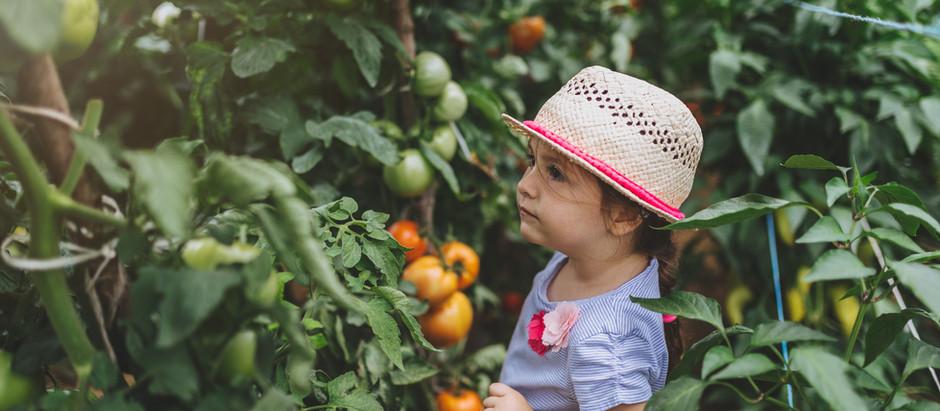 Alimentation bébé & jeune enfant