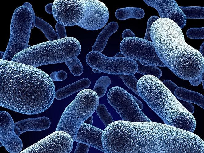 fond_bacteries_02.jpg