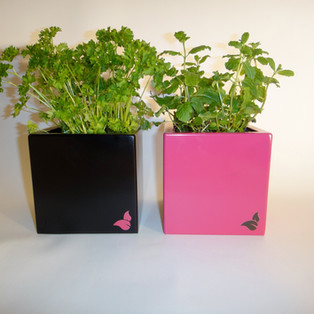 Powder coated Herb planters