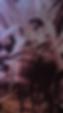 35CD776F-DCC7-4543-B833-CF24CB869D28_edi