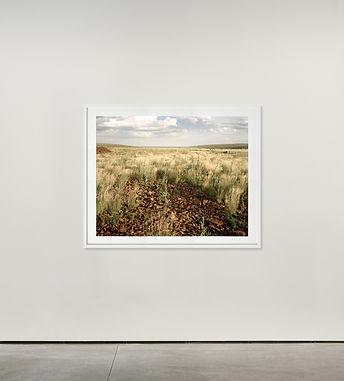 David Goldblatt wall.jpg