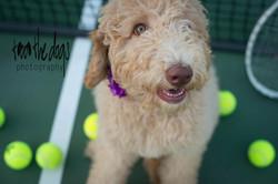 Emma - tennis anyone?
