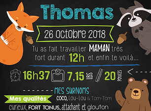 THOMAS-01.png