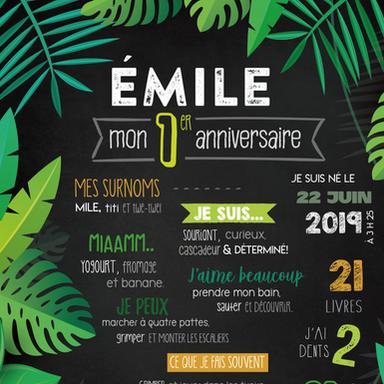EMILE.png
