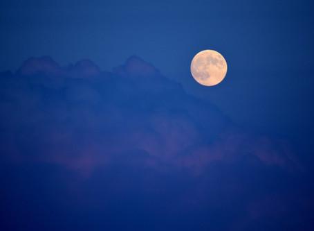 Full Moon in Libra Diffuser Blend - Peace Warrior