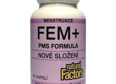 FEM + (90 tbl.)