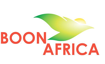 Boon Africa Construction