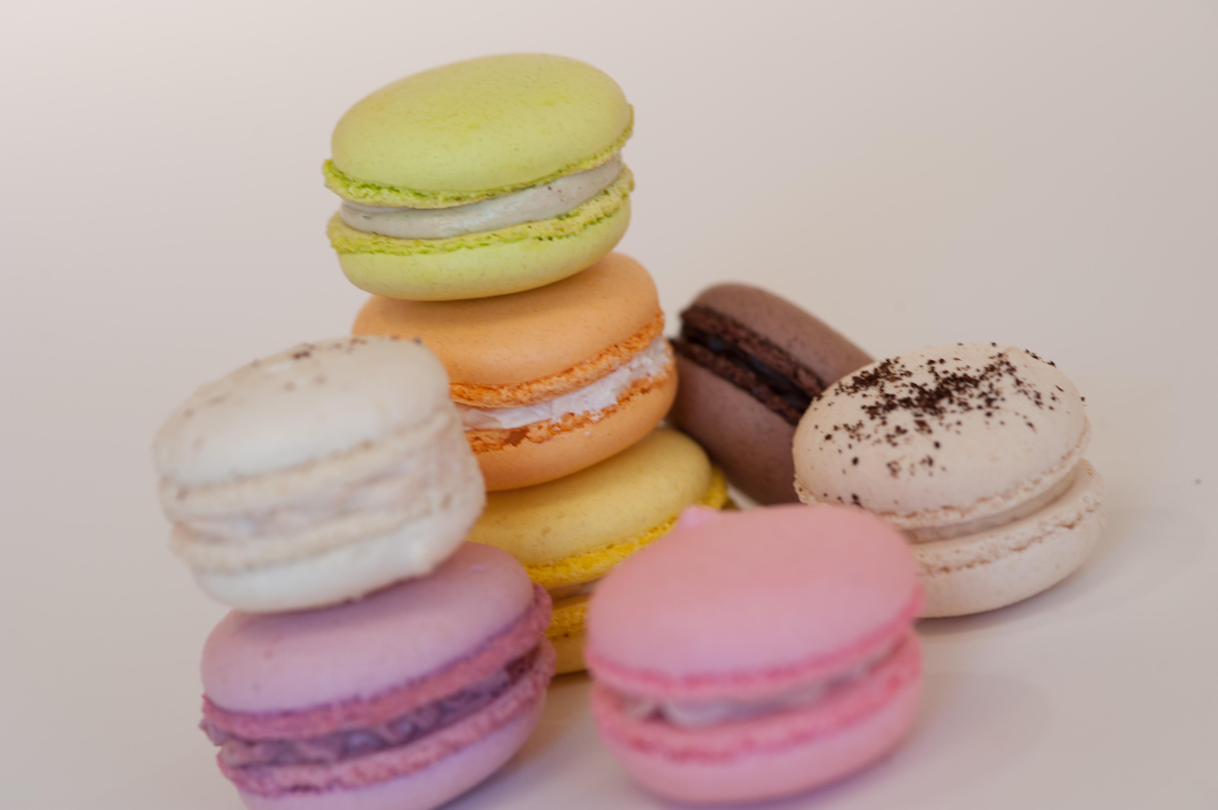 TSM - Macaron Colors